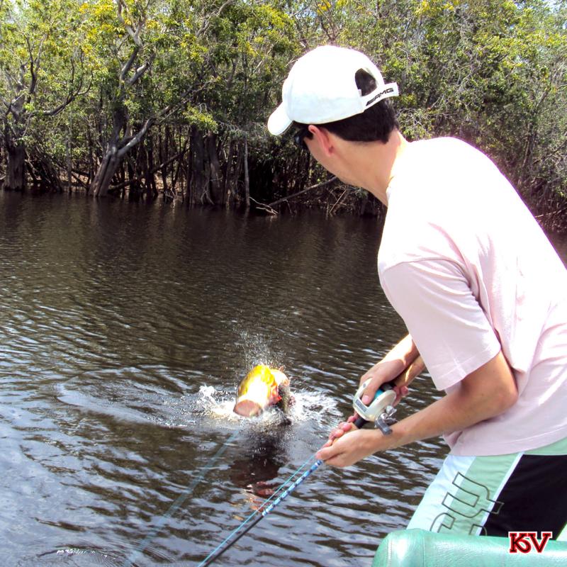 Douglas Venturini pescando em Itapará.